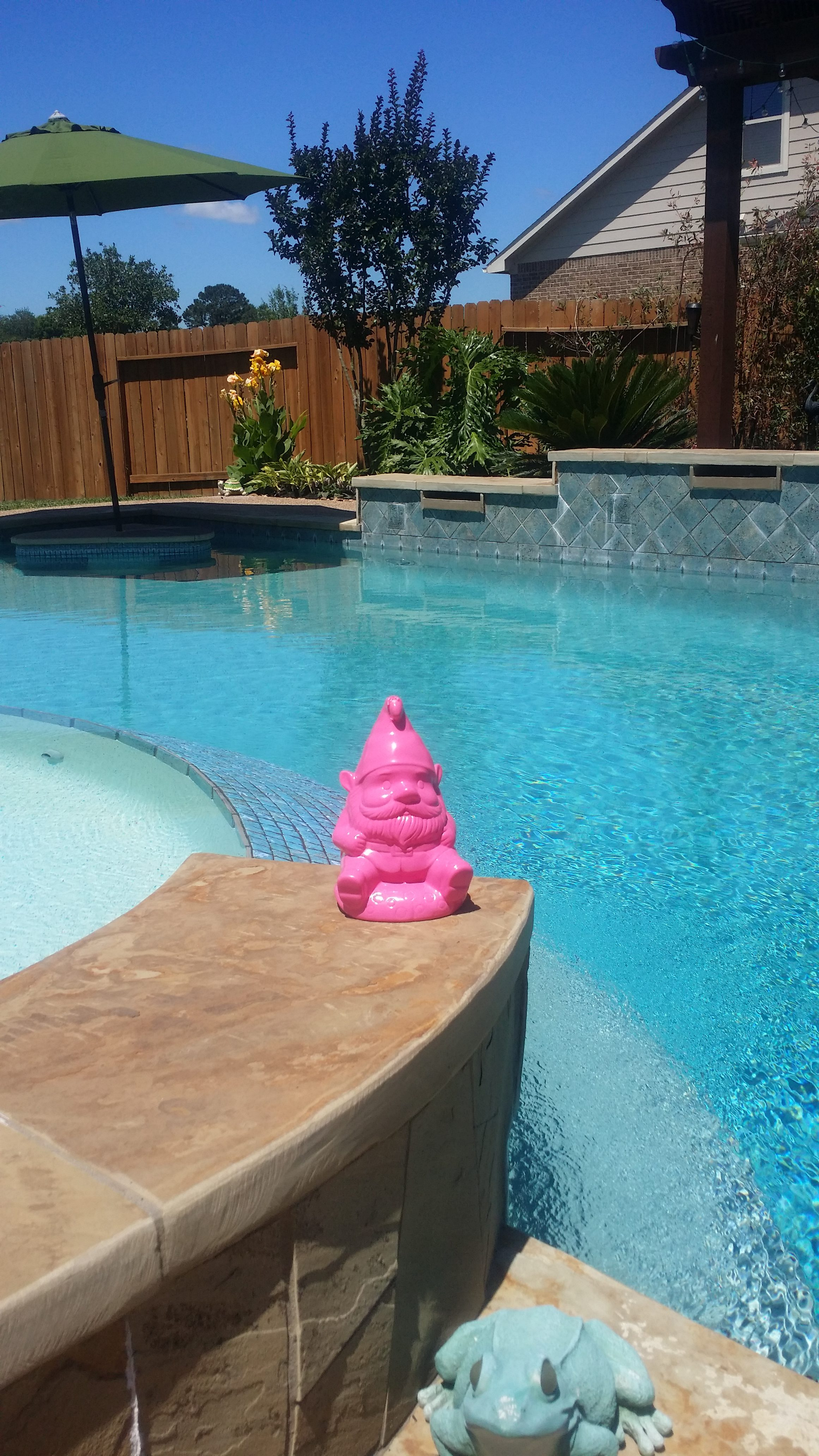 Gnome Pool Houston Texas Family RV Living Motorhome Mothers Day